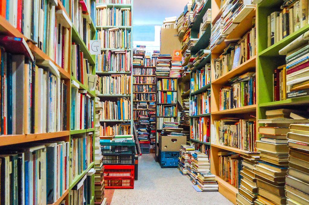 Good books to read while travelling (goede boeken voor op reis)