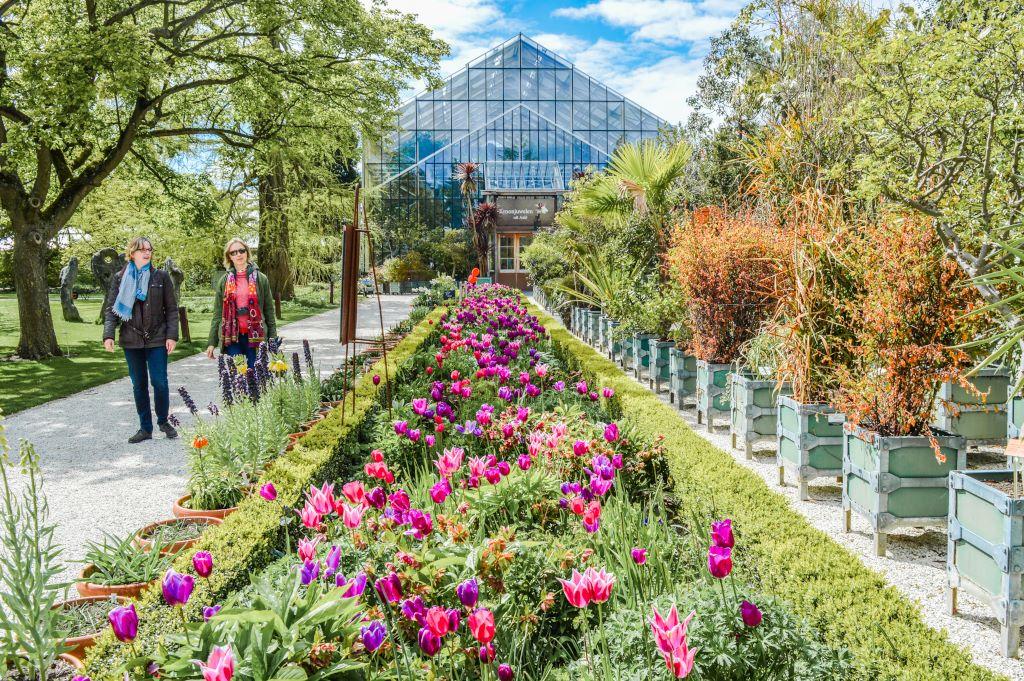 Hortus Botanicus (Botanical Garden) in Leiden