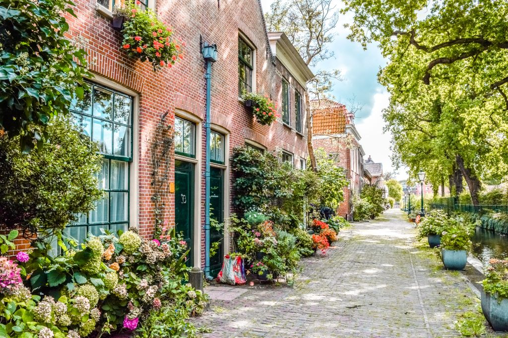 A charming alley near botanical garden of Leiden.