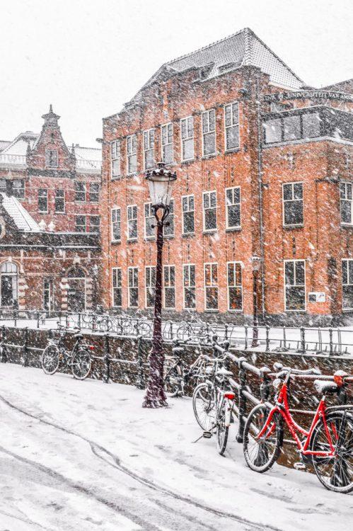 Snowy scene in Amsterdam