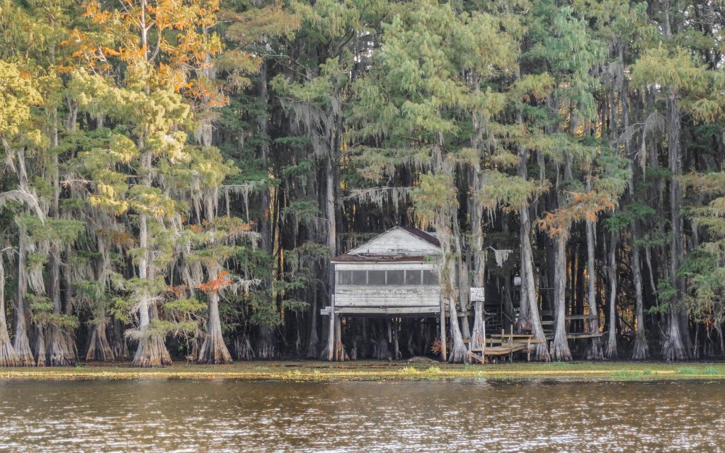 A view of Caddo Lake and a house on stilts between the trees.