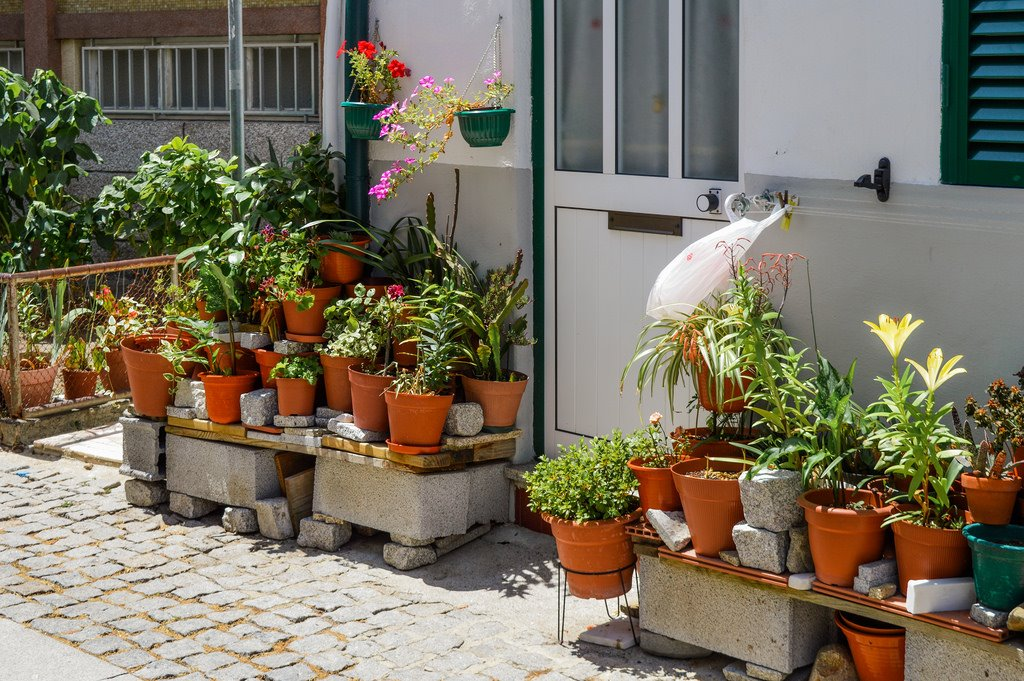 In defense of dull places: don't ignor the little details, like an elaborate collection of flower pots next to an anonymous doorway.