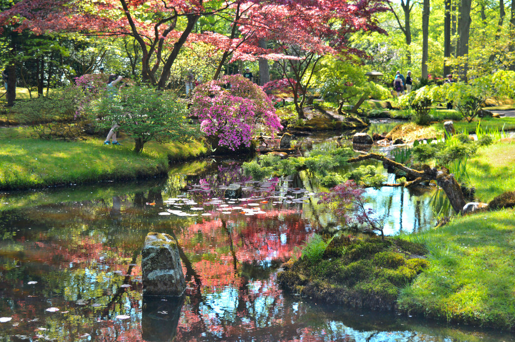 The Japanese Garden in The Hague in Spring