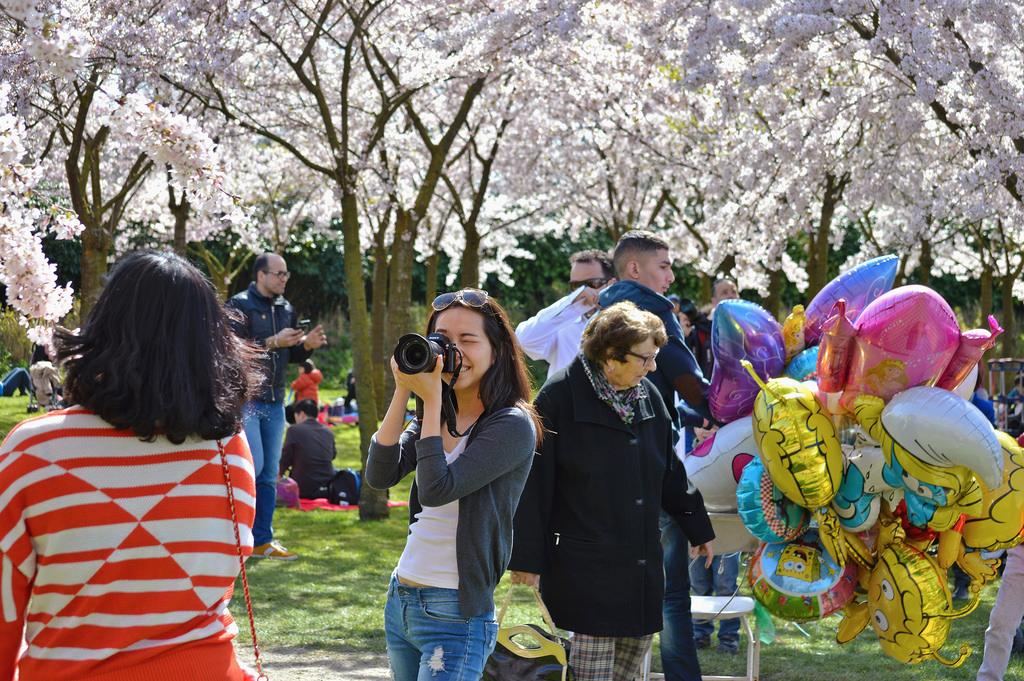 Celebrating Spring at the Amsterdamse Bos