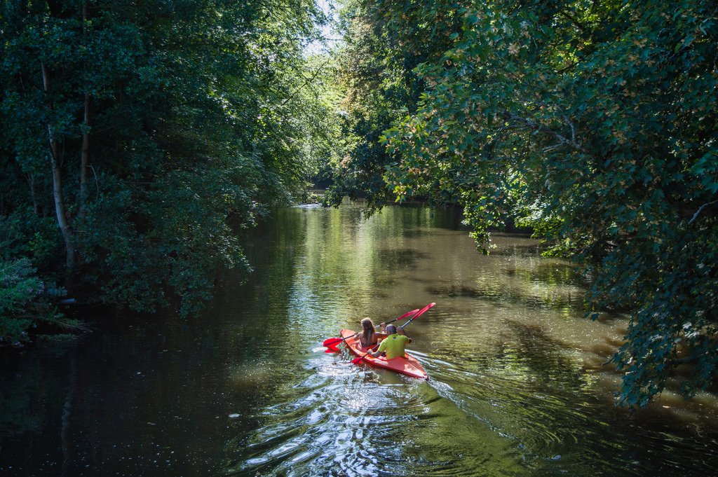 Kayaking in the Amsterdam Forest